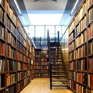 Библиотеки Светлого