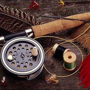 Охотничьи и рыболовные магазины Светлого