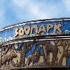 Зоопарки в Светлом