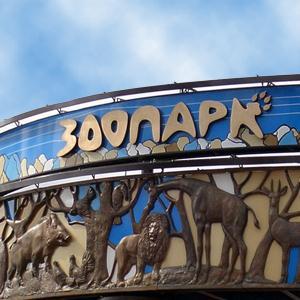 Зоопарки Светлого